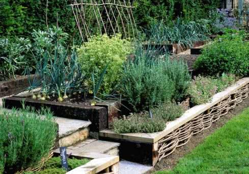 Правила создания декоративного огорода