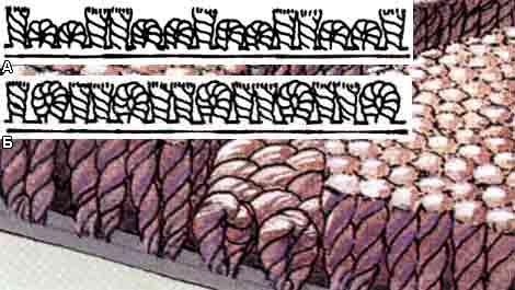 Комбинированный ворс ковролина