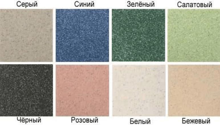 Разнообразие цветов и форм
