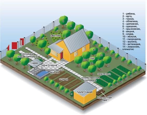 Планирование ландшафта дизайна сада