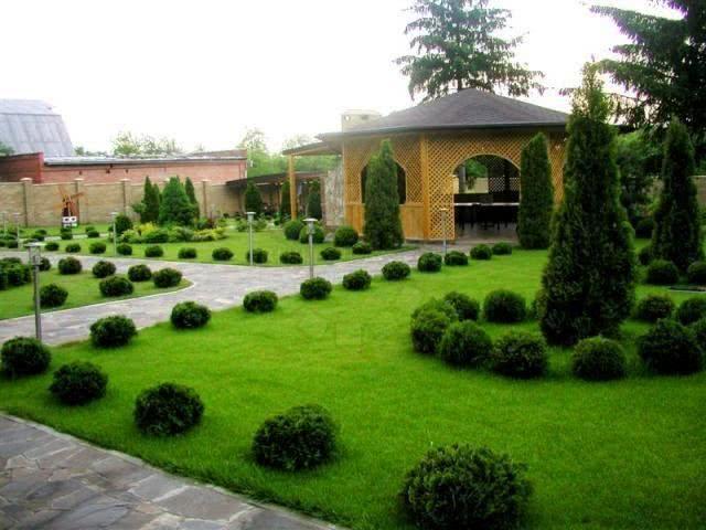 Ландшафтный дизайн газона