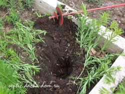 Садовая скважин