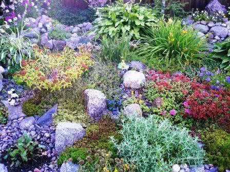 Правильная посадка растений