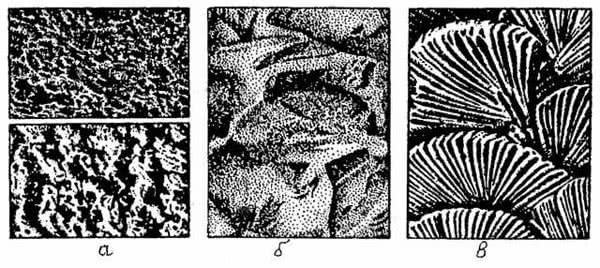Рис. 8.10. Фактуры известково-песчаной штукатурки: а - набрызг; б - под рваный камень; в - штампованная
