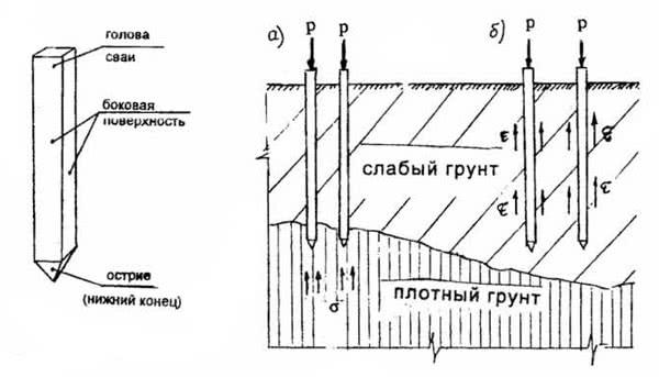 Рис. 3.2. Элементы сваи; Рис. 3.3. Виды свай: а – сваи стойки; б – висячие сваи