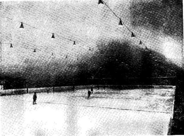 Рис. 7. Двухслойная оболочка над хоккейным полем в Эсбо (1978 г.)
