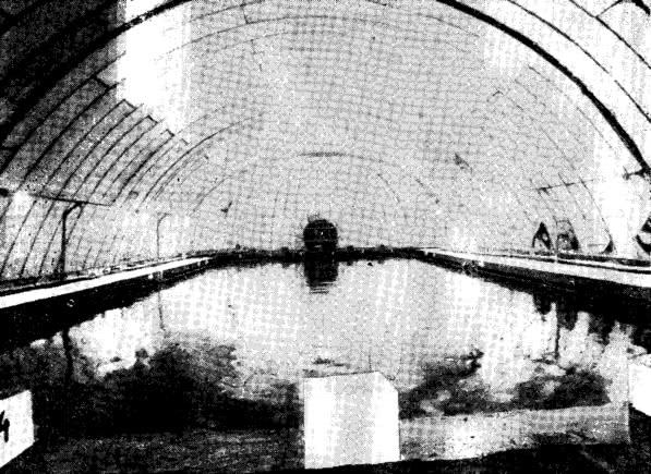 Рис. 3. Интерьер плавательного бассейна в Братиславе