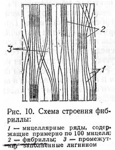 Рис. 10. Схема строения фибриллы