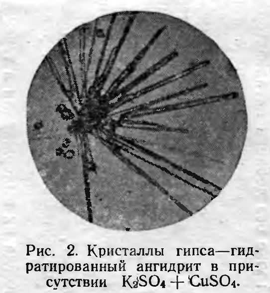 Рис. 2. Гидратированный ангидрит в присутствии K<sub>2</sub>SO<sub>4</sub>