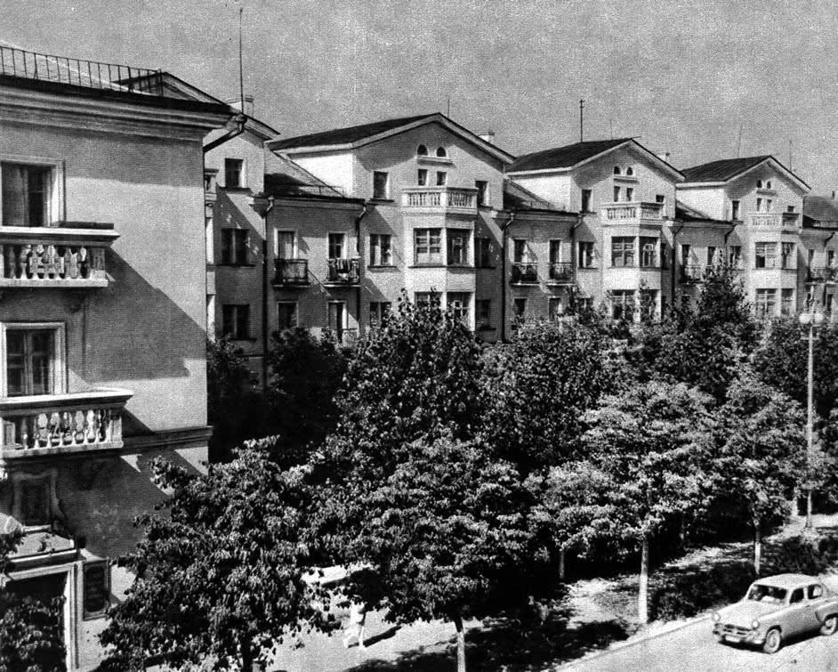 Рядовые посадки деревьев по улице Олега Кошевого