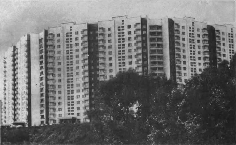 Ясенево. Одна из жилых групп