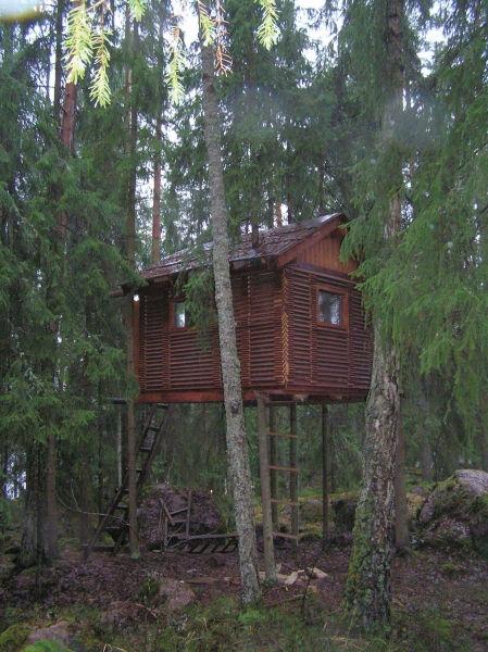 Рис.2.7. Внешний вид готового домика на деревьях
