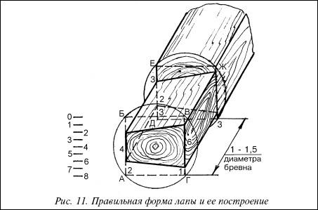 Рис.11. Правильная форма лапы и ее построение