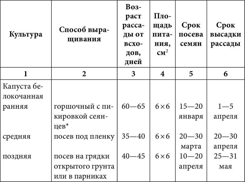 Специфика выращивания рассады вквартире инадачном участке