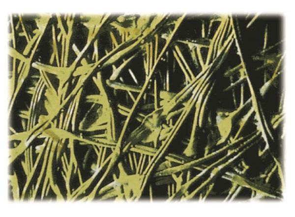 Рис. 5. Геотекстиль Typar. Структура материала