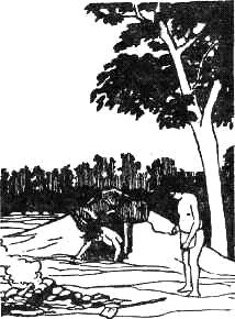 Из истории бани