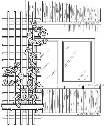 Растительный дизайн балконов, лоджий, террас, беседок