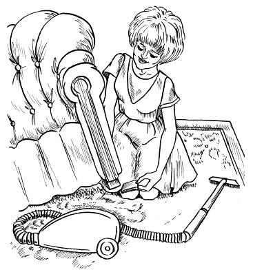 Глава 4. Уход за коврами и ворсовыми покрытиями