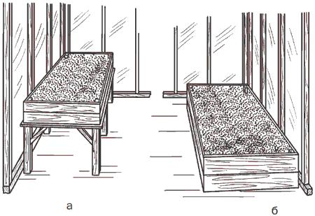 Рис. 93. Типы тепличных грядок: а – приподнятая грядка; б – грядка на подставке.