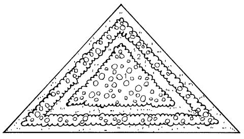 Рис. 47 (продолжение). II – овальная клумба: 1 – бархатцы; 2 – амарант; 3 – настурция; 4– герань; 5 – маргаритки; III – круглая клумба: 1 – газон; 2 – перилла; 3 – незабудка; 4 – оформление клумбы (кирпич «на ребро»); IV – треугольная клумба: 1 – пеларгония; 2 – газон