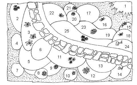 Рис. 54. Схема осеннего цветника-миксбордера вдоль садовой дорожки: 1 – гортензия метельчатая; 2 – астра однолетняя Балльфее; 3 – осенний безвременник и хоста белоокаймленная; 4 – золотарник; 5 – шалфей огненный (сальвия); 6 – резеда душистая; 7 – эхинацея пурпурная; 8 – флокс метельчатый розовый; 9 – нивяник (ромашка); 10 – астра новобельгийская голубая; 11 – астра однолетняя Ривьера синяя; 12 – хризантема корейская темно-красная; 13 – гайлардия остистая; 14 – петуния Виоляцеа синяя; 15 – табак душистый; 16 – астра новобельгийская синяя; 17 – гелениум осенний; 18 – астра однолетняя Зильберрайер; 19 – цинния изящная красная; 20 – флокс метельчатый сиреневый; 21 – флокс метельчатый свекольного цвета; 22 – бархатцы отклоненные оранжевые; 23 – астра однолетняя Юбилейная белая; 24 – петуния розовая; 25 – лобелия эринус