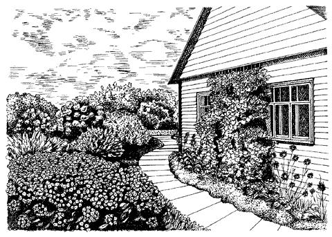 Рис. 61. Цветник и вертикальное озеленение у дома