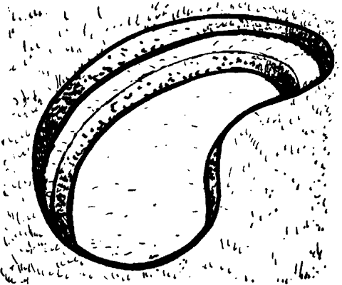 Рис. 63. Терраса для прибрежных растений