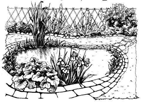Рис. 66. Декоративный водоем