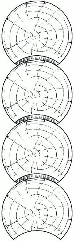Рис. 8. Соединение венцов посредством паза