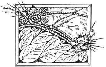 Рис.12. Коллаж