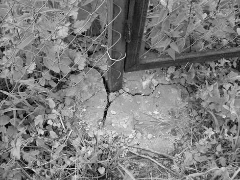 Ограда из сетки-рабицы