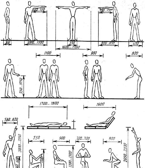 Антропометрические факторы и конструирование мебели