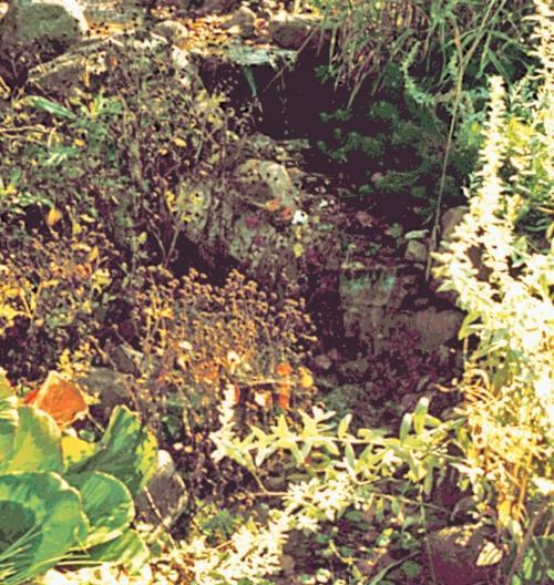 Фото 3.5.15, 3.5.16. Свой путь в бассейн вода начинает с альпийской горки, пробегает под перекидным мостиком и вытекает из-под мостика непосредственно перед впадением в бассейн