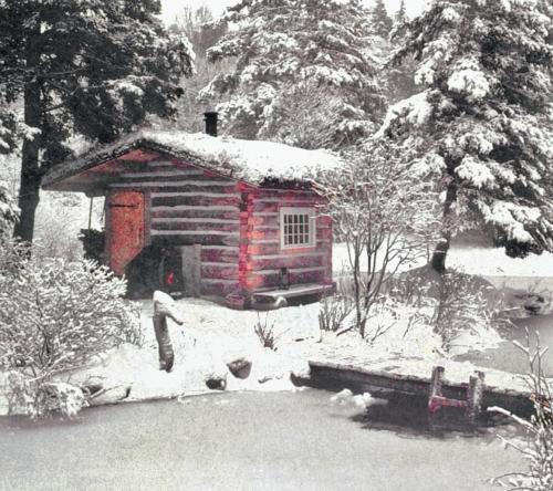 Фото 3.6.2. …и прекрасна зимой